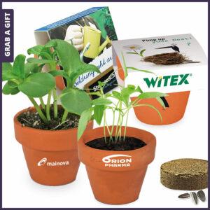 Grab a Gift mini logo-pot - Terra cotta bloempotje met logo en bedrukte banderol