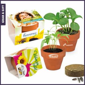Grab a Gift Mini Logo-Pot - Potje met turfschijfje en zaadjes en bedrukte wikkel