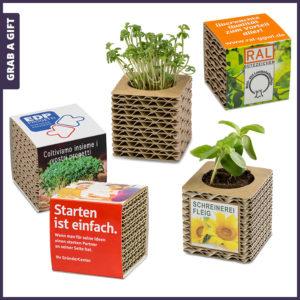 Grab a Gift - Plantenpotje van karton bedrukken met logo