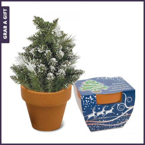 Grab a Gift - Kerstboom zaadjes in potje met logo en Full Colour bedrukte wikkel