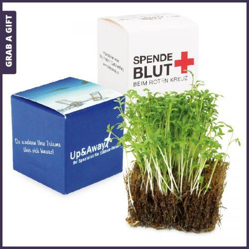 Grab a Gift - Kokos-kubus met tuinkers zaadjes bedrukken met logo