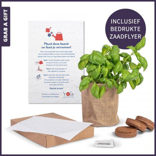 Grab a Gift - Kweeksetje door de brievenbus met zaadflyer